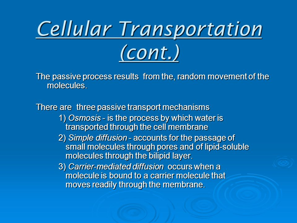 Cellular Transportation (cont.) The passive process results from the, random movement of the molecules.