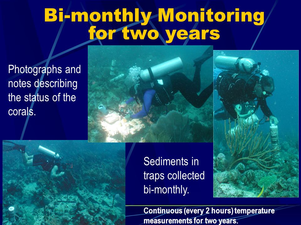 Bi-monthly Monitoring for two years Photographs and notes describing the status of the corals.