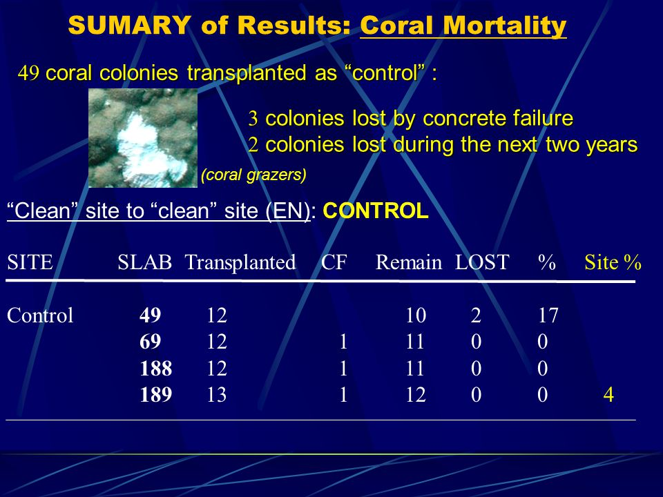 "SUMARY of Results: Coral Mortality SITE SLAB Transplanted CF Remain LOST % Site % Control491210217 691211100 1881211100 18913112004 ""Clean"" site to ""c"