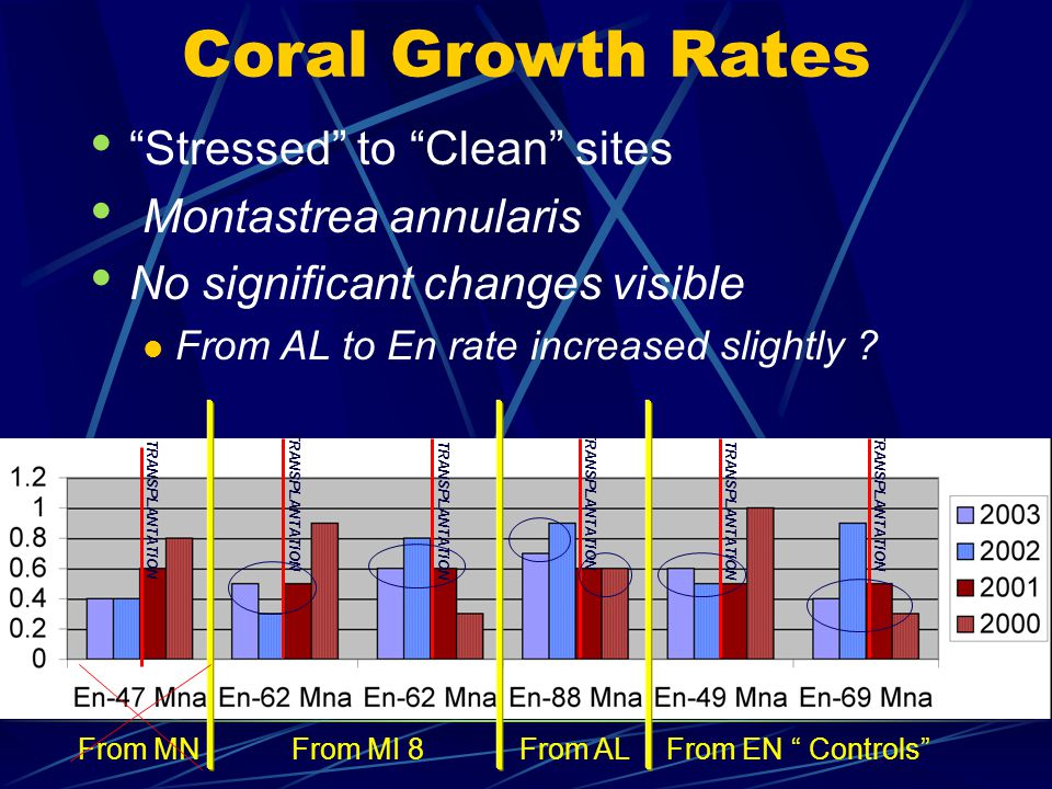 Coral Growth Rates Stressed to Clean sites Montastrea annularis No significant changes visible From AL to En rate increased slightly .
