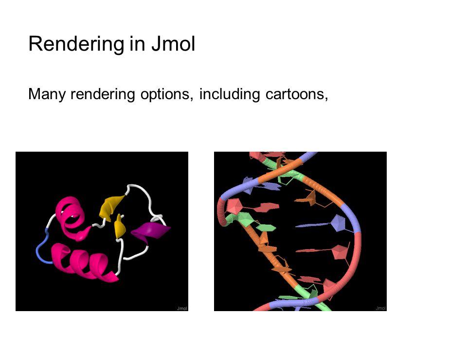 Rendering in Jmol Many rendering options, including cartoons,