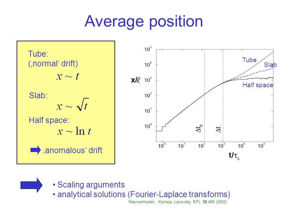 Average position Tube Half space Slab Tube: ('normal' drift) Slab: Half space: 'anomalous' drift Scaling arguments analytical solutions (Fourier-Laplace transforms) b Nieuwenhuizen, Klumpp, Lipowsky, EPL 58,468 (2002)