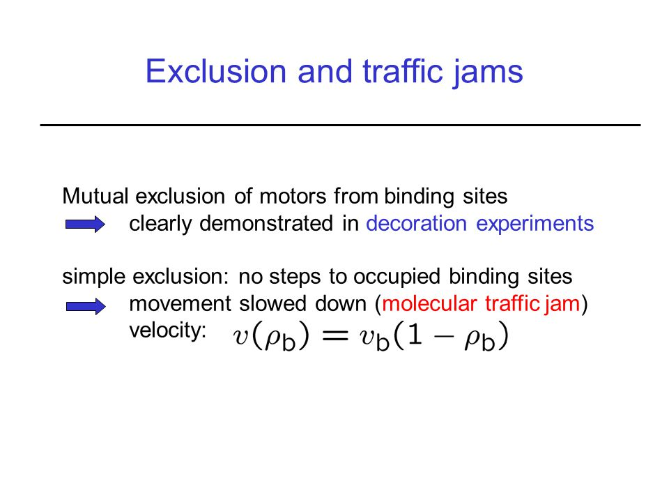 Exclusion and traffic jams Mutual exclusion of motors from binding sites clearly demonstrated in decoration experiments simple exclusion: no steps to occupied binding sites movement slowed down (molecular traffic jam) velocity: