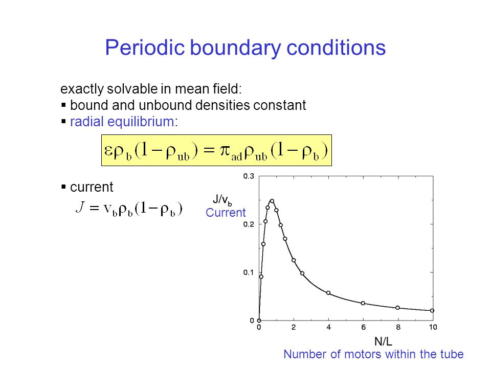 Periodic boundary conditions exactly solvable in mean field:  bound and unbound densities constant  radial equilibrium:  current Current Number of motors within the tube