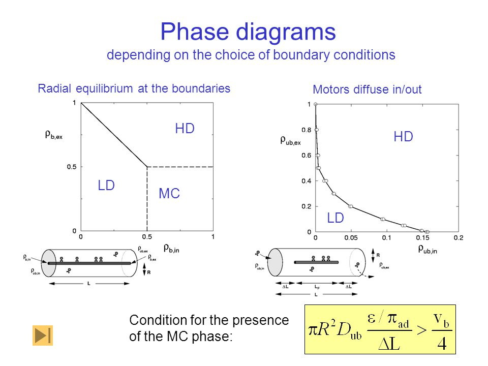 Phase diagrams Condition for the presence of the MC phase: LD HD MC Radial equilibrium at the boundaries depending on the choice of boundary condition