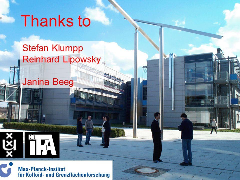 Thanks to Stefan Klumpp Reinhard Lipowsky Janina Beeg