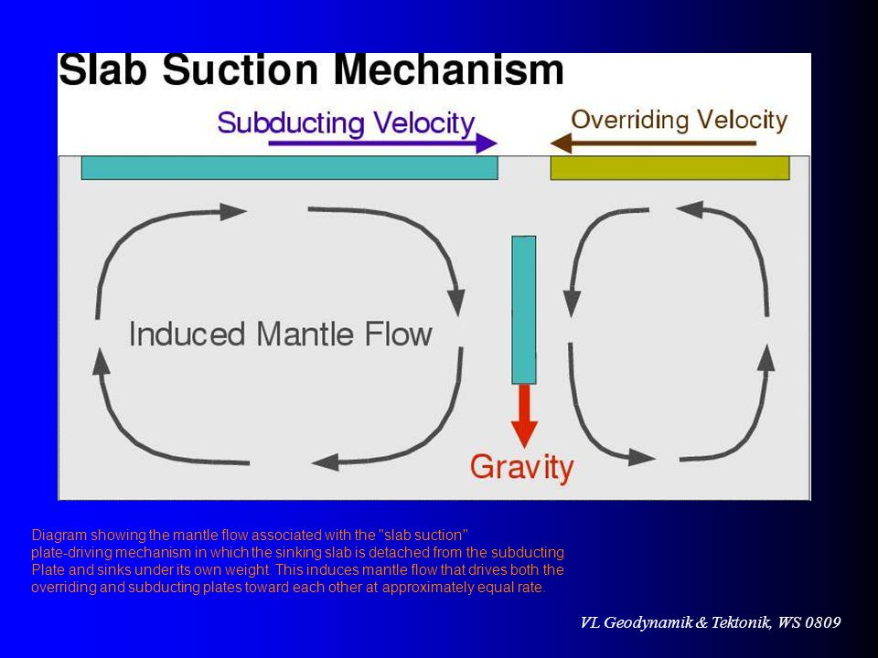VL Geodynamik & Tektonik, WS 0809 Diagram showing the mantle flow associated with the slab suction plate-driving mechanism in which the sinking slab is detached from the subducting Plate and sinks under its own weight.