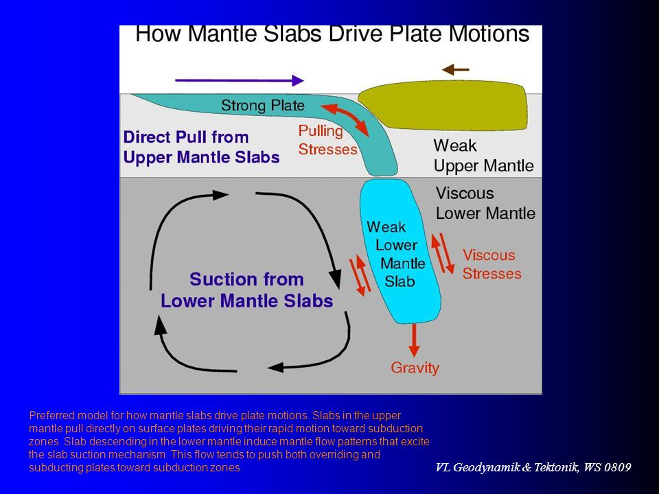 VL Geodynamik & Tektonik, WS 0809 Preferred model for how mantle slabs drive plate motions.