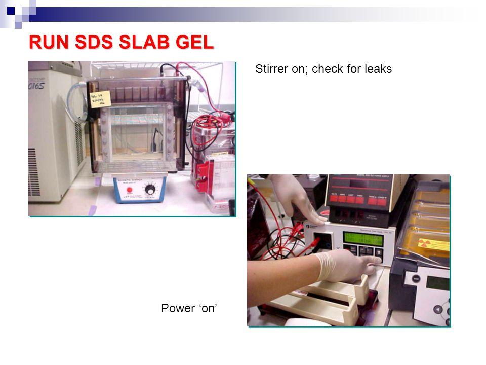 RUN SDS SLAB GEL Stirrer on; check for leaks Power 'on'