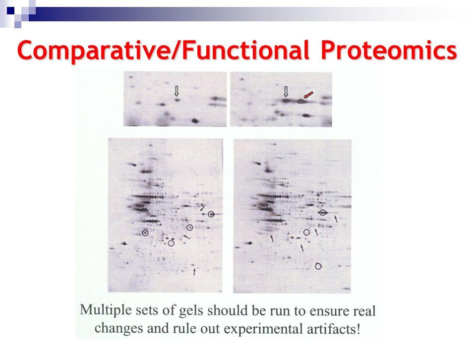Comparative/Functional Proteomics