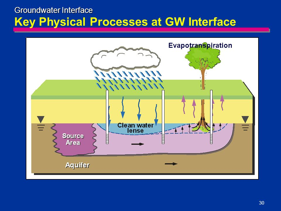 30 Key Physical Processes at GW Interface Groundwater Interface Evapotranspiration