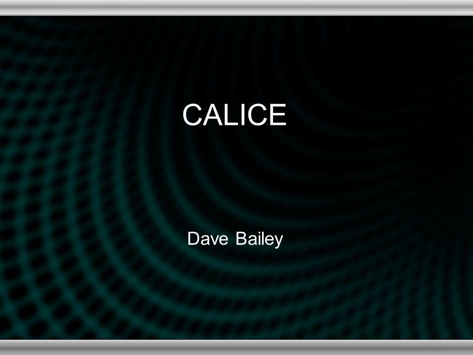CALICE Dave Bailey