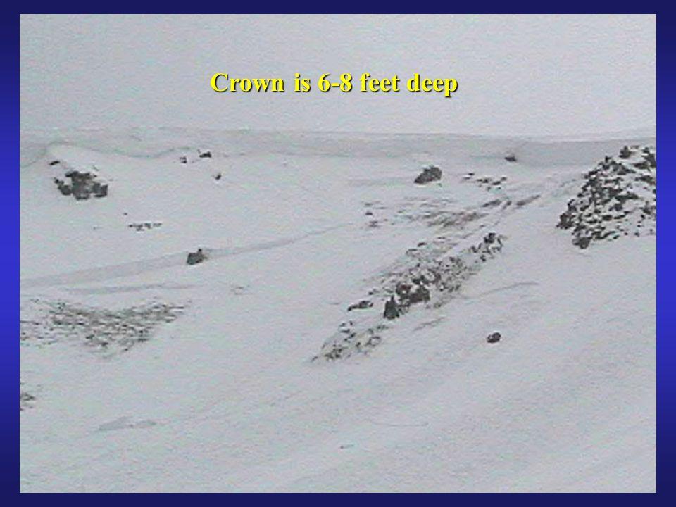 53 Crown is 6-8 feet deep