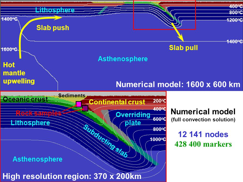 Numerical model: 1600 x 600 km High resolution region: 370 x 200km 400 o C 800 o C 1200 o C 200 o C 400 o C 600 o C 800 o C 1000 o C 1400 o C Lithosphere Asthenosphere 1600 o C Slab push Slab pull 1400 o C Continental crust Oceanic crust Sediments Rock samples Numerical model (full convection solution) 12 141 nodes 428 400 markers Hot mantle upwelling Hot mantle upwelling Lithosphere Asthenosphere Continental crust Oceanic crust Subducting slab Overriding plate