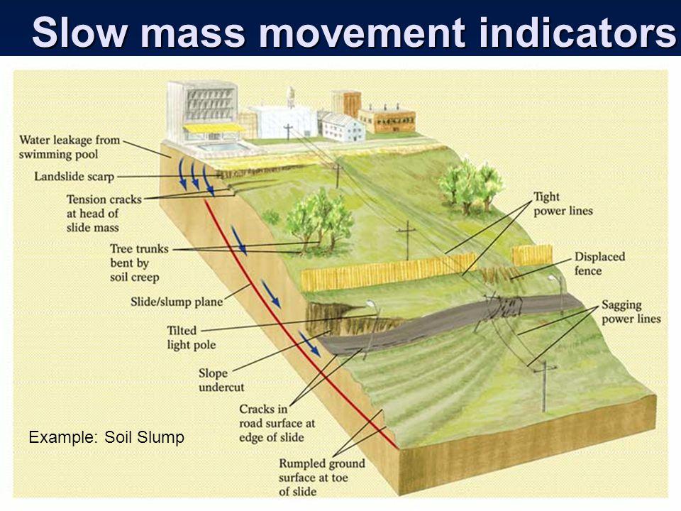 Slow mass movement indicators Example: Soil Slump