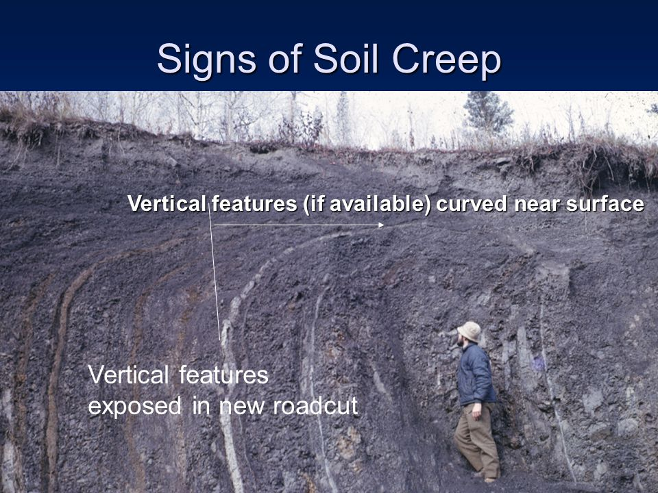 Signs of Soil Creep Vertical features exposed in new roadcut Vertical features (if available) curved near surface