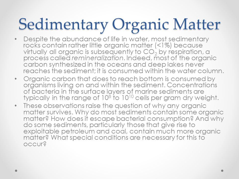 Sedimentary Organic Matter Despite the abundance of life in water, most sedimentary rocks contain rather little organic matter (<1%) because virtually