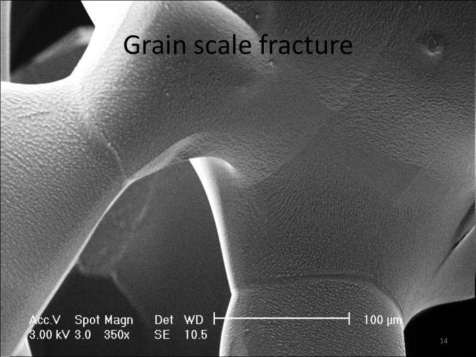 Grain scale fracture 14