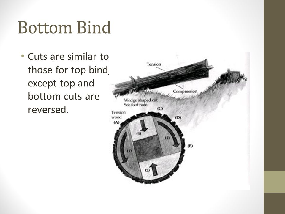 Bottom Bind Cuts are similar to those for top bind, except top and bottom cuts are reversed.