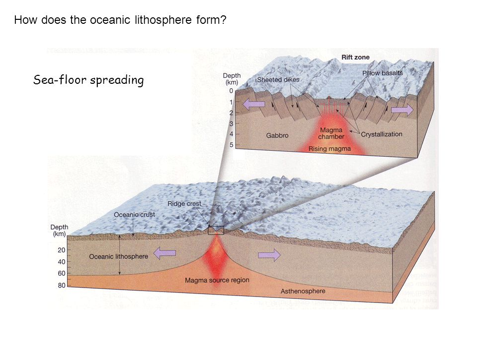 How does the oceanic lithosphere form Sea-floor spreading