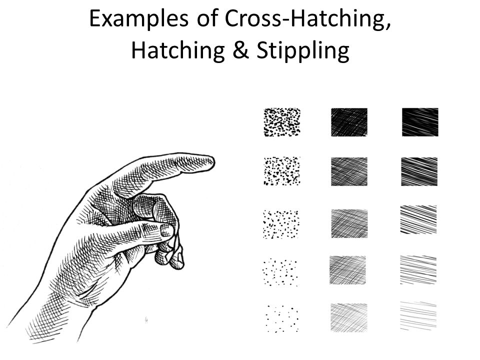 Examples of Cross-Hatching, Hatching & Stippling