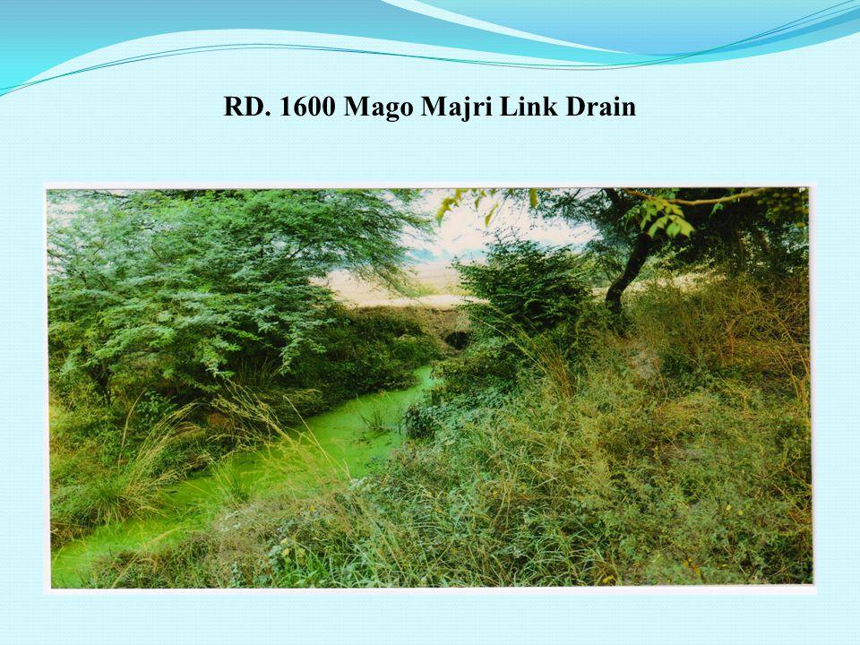RD. 3670 Mago Majri Link Drain