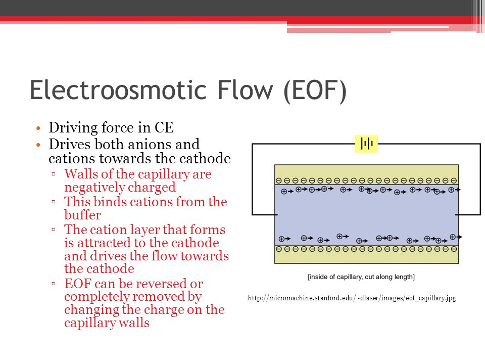 Electroosmotic Flow (EOF) Driving force in CE Drives both anions and cations towards the cathode ▫Walls of the capillary are negatively charged ▫This binds cations from the buffer ▫The cation layer that forms is attracted to the cathode and drives the flow towards the cathode ▫EOF can be reversed or completely removed by changing the charge on the capillary walls http://micromachine.stanford.edu/~dlaser/images/eof_capillary.jpg