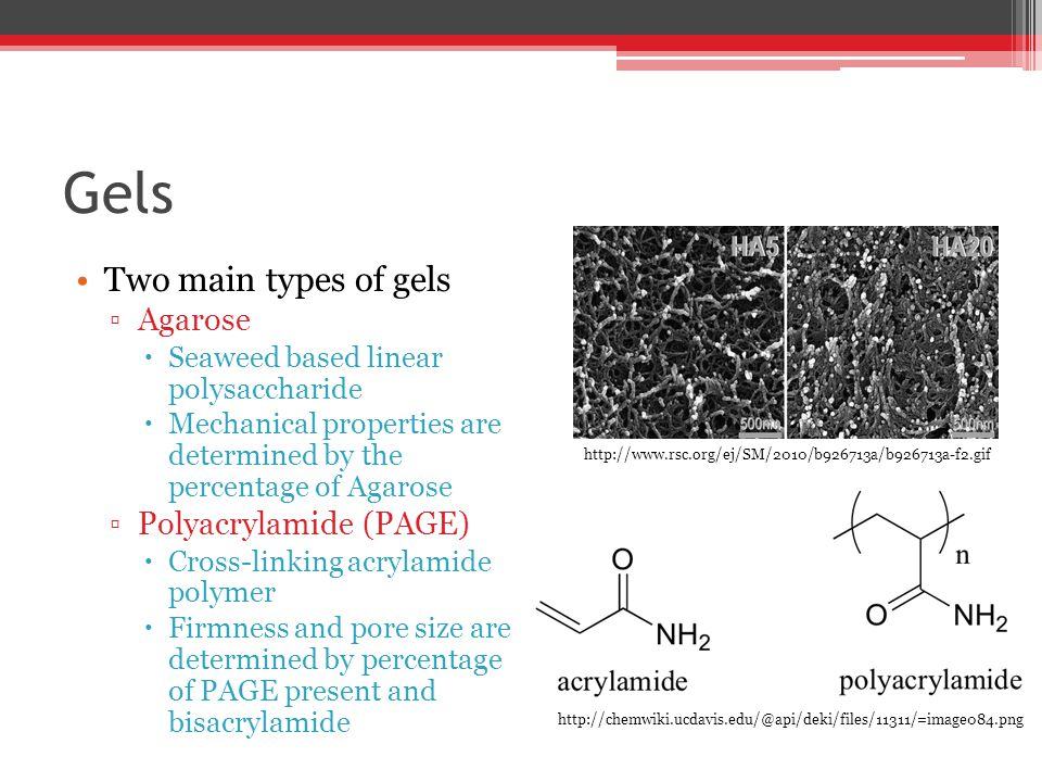 Gels Two main types of gels ▫Agarose  Seaweed based linear polysaccharide  Mechanical properties are determined by the percentage of Agarose ▫Polyacrylamide (PAGE)  Cross-linking acrylamide polymer  Firmness and pore size are determined by percentage of PAGE present and bisacrylamide http://www.rsc.org/ej/SM/2010/b926713a/b926713a-f2.gif http://chemwiki.ucdavis.edu/@api/deki/files/11311/=image084.png