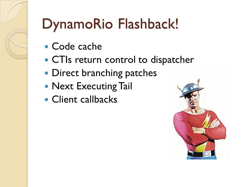 DynamoRio Flashback.