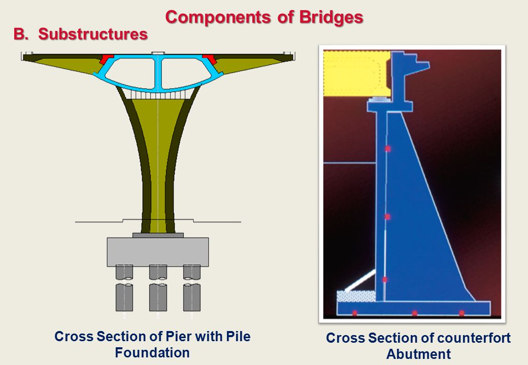 Components of Bridges B.Substructures Cross Section of Pier with Pile Foundation Cross Section of counterfort Abutment
