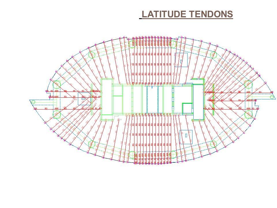 LATITUDE TENDONS