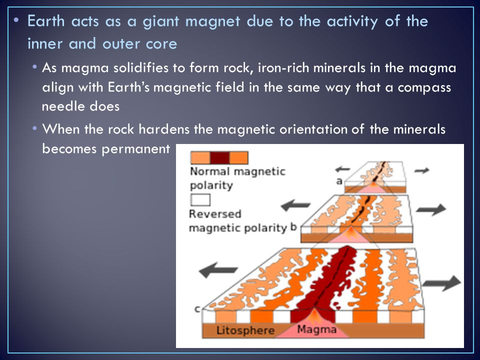 Earth acts as a giant magnet due to the activity of the inner and outer core As magma solidifies to form rock, iron-rich minerals in the magma align w
