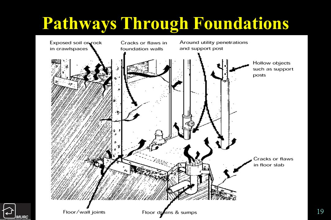 19 Pathways Through Foundations