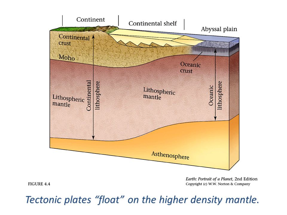 Upwelling Magma new crust added felsic and low density light and fluffy mafic and high density dark and dense Mid-Ocean Ridge Continental Crust Oceanic Crust Subducting Slab old crust destroyed Mantle Aesthenosphere thick and buoyant does not subduct thin and sinks does subduct Tectonic plates float on the higher density mantle.