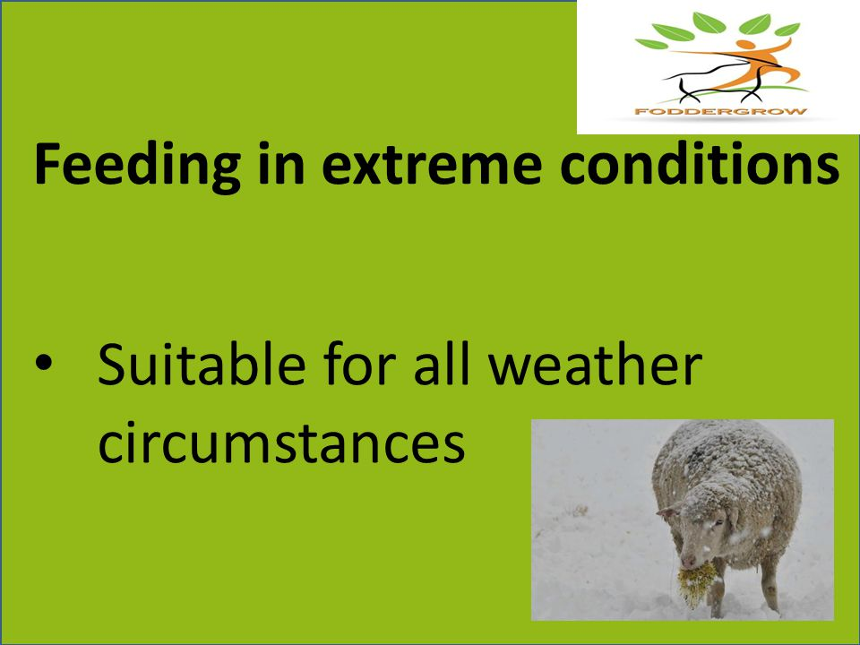 Feeding in extreme conditions Suitable for all weather circumstances