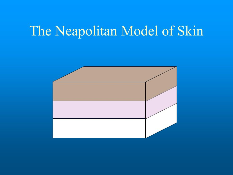 The Neapolitan Model of Skin