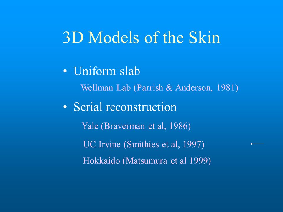 3D Models of the Skin Uniform slab Serial reconstruction Wellman Lab (Parrish & Anderson, 1981) Hokkaido (Matsumura et al 1999) Yale (Braverman et al, 1986) UC Irvine (Smithies et al, 1997)