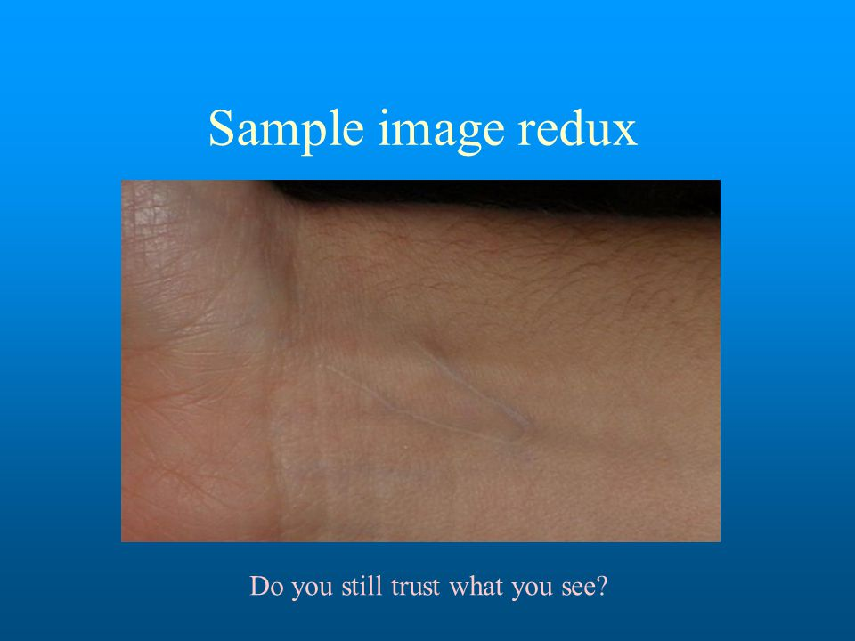 Sample image redux Do you still trust what you see
