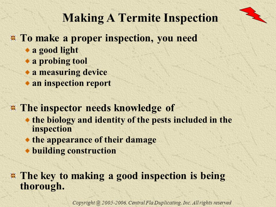 Making A Termite Inspection To make a proper inspection, you need a good light a probing tool a measuring device an inspection report The inspector needs knowledge of the biology and identity of the pests included in the inspection the appearance of their damage building construction The key to making a good inspection is being thorough.