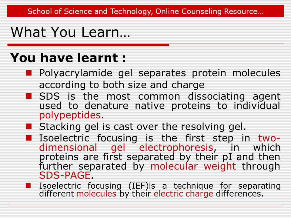 School of Science and Technology, Online Counseling Resource… What You Learn… You have learnt : Polyacrylamide gel separates protein molecules according to both size and charge SDS is the most common dissociating agent used to denature native proteins to individual polypeptides.