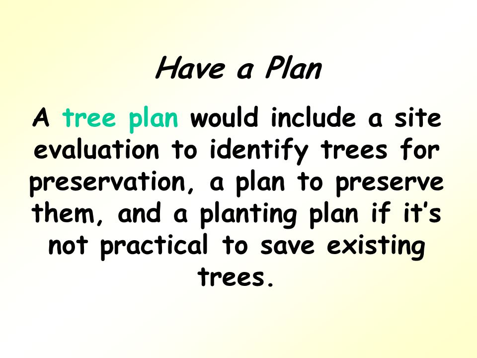 Have a Plan A tree plan would include a site evaluation to identify trees for preservation, a plan to preserve them, and a planting plan if it's not practical to save existing trees.