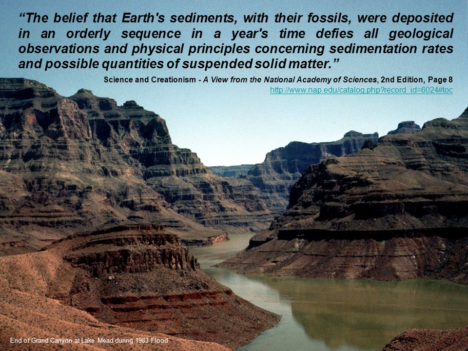 """""""The belief that Earth's sediments, with their fossils, were deposited in an orderly sequence in a year's time defies all geological observations and"""