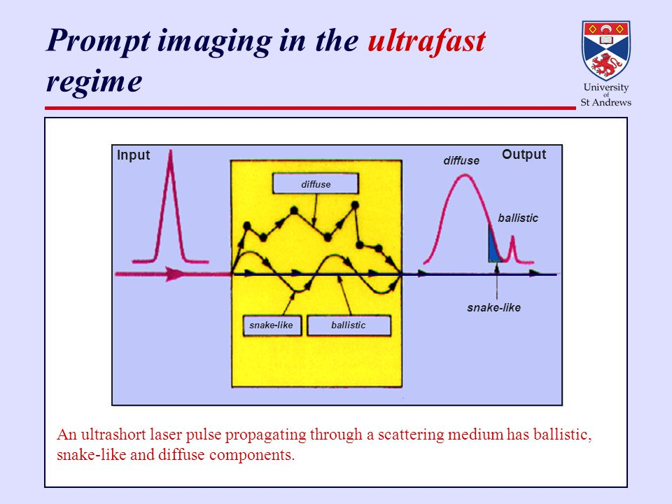 Prompt imaging in the ultrafast regime Input diffuse snake-like ballistic snake-like ballistic diffuse Output An ultrashort laser pulse propagating through a scattering medium has ballistic, snake-like and diffuse components.