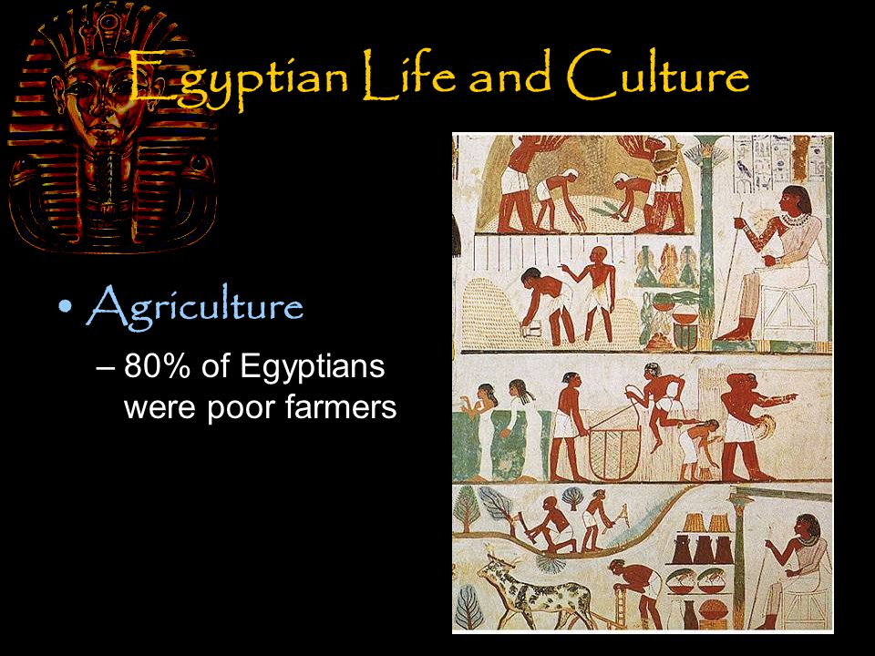 Egyptian Life and Culture Agriculture –80% of Egyptians were poor farmers