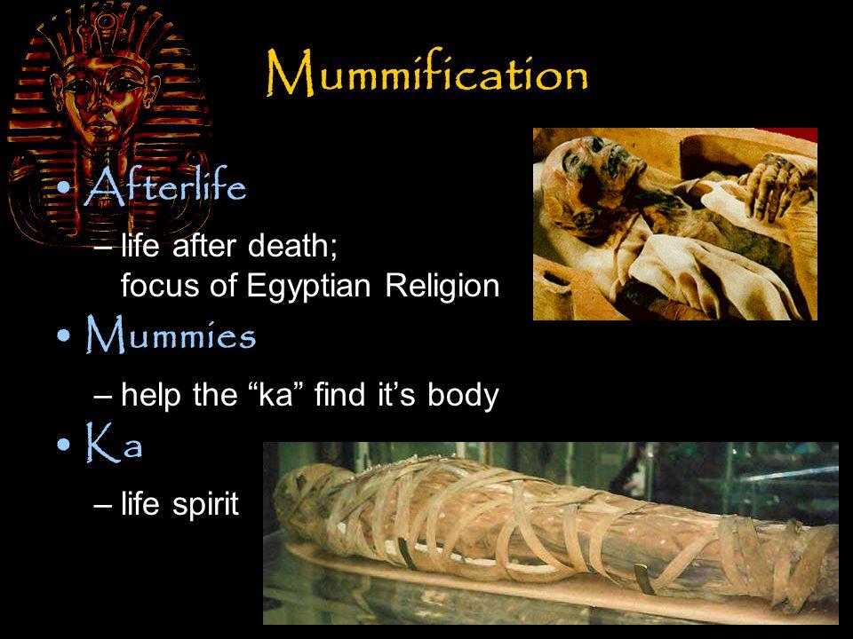 Mummification Sarcophagus –bone box; decorated coffin Canopic Jars –held internal organs of mummy
