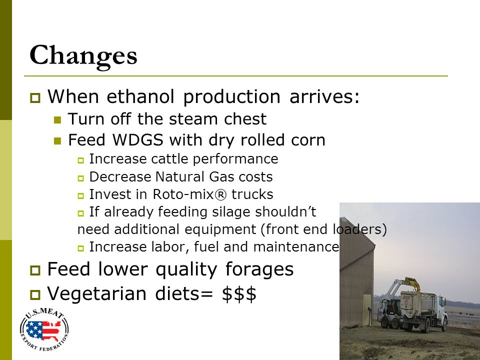 Changes  When ethanol production arrives: Turn off the steam chest Feed WDGS with dry rolled corn  Increase cattle performance  Decrease Natural Gas costs  Invest in Roto-mix® trucks  If already feeding silage shouldn't need additional equipment (front end loaders)  Increase labor, fuel and maintenance  Feed lower quality forages  Vegetarian diets= $$$