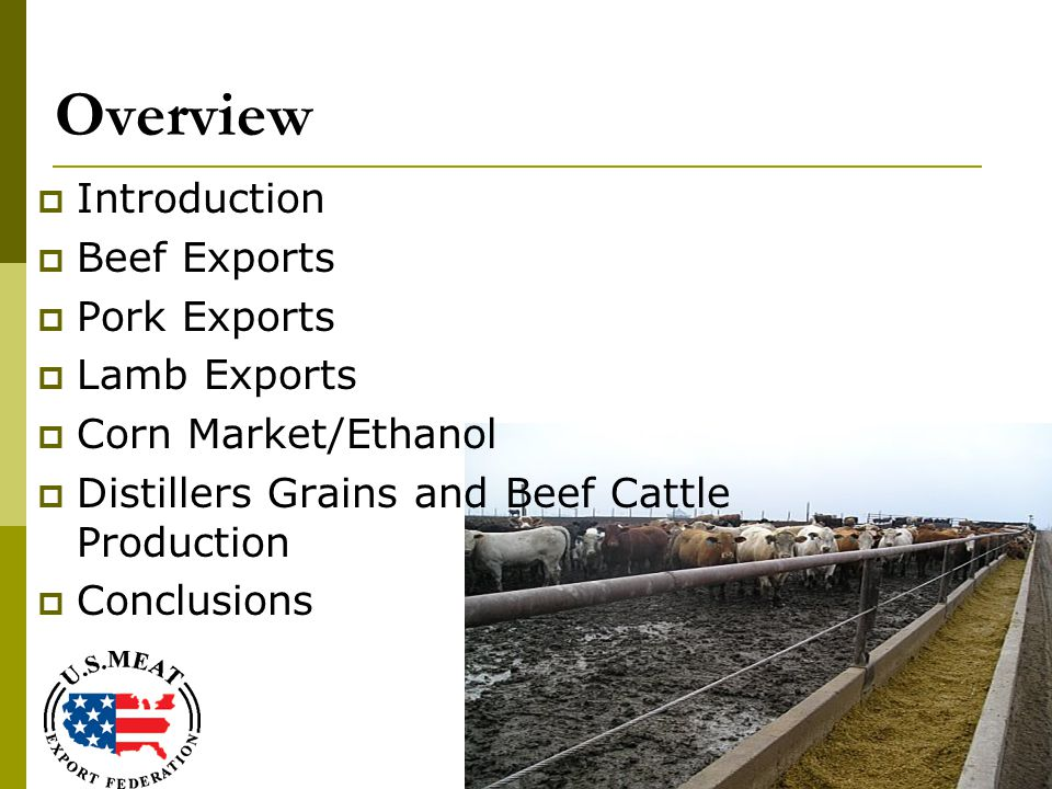 Overview  Introduction  Beef Exports  Pork Exports  Lamb Exports  Corn Market/Ethanol  Distillers Grains and Beef Cattle Production  Conclusions