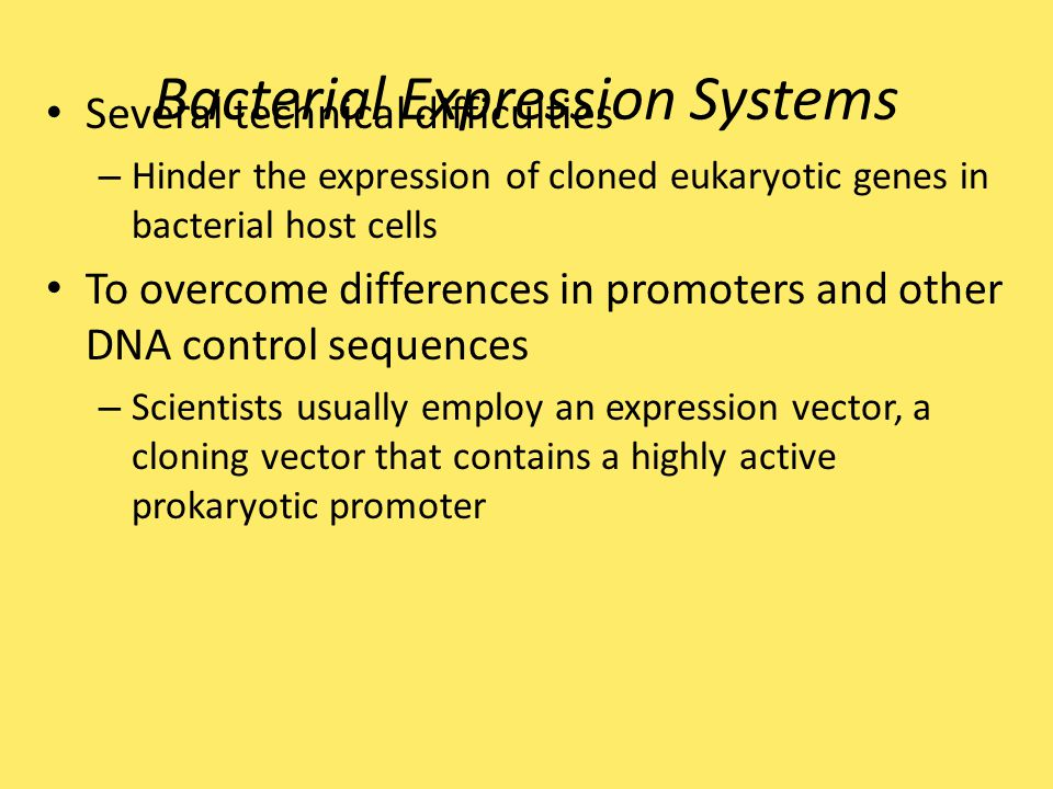 Bacterial Expression Systems Several technical difficulties – Hinder the expression of cloned eukaryotic genes in bacterial host cells To overcome dif