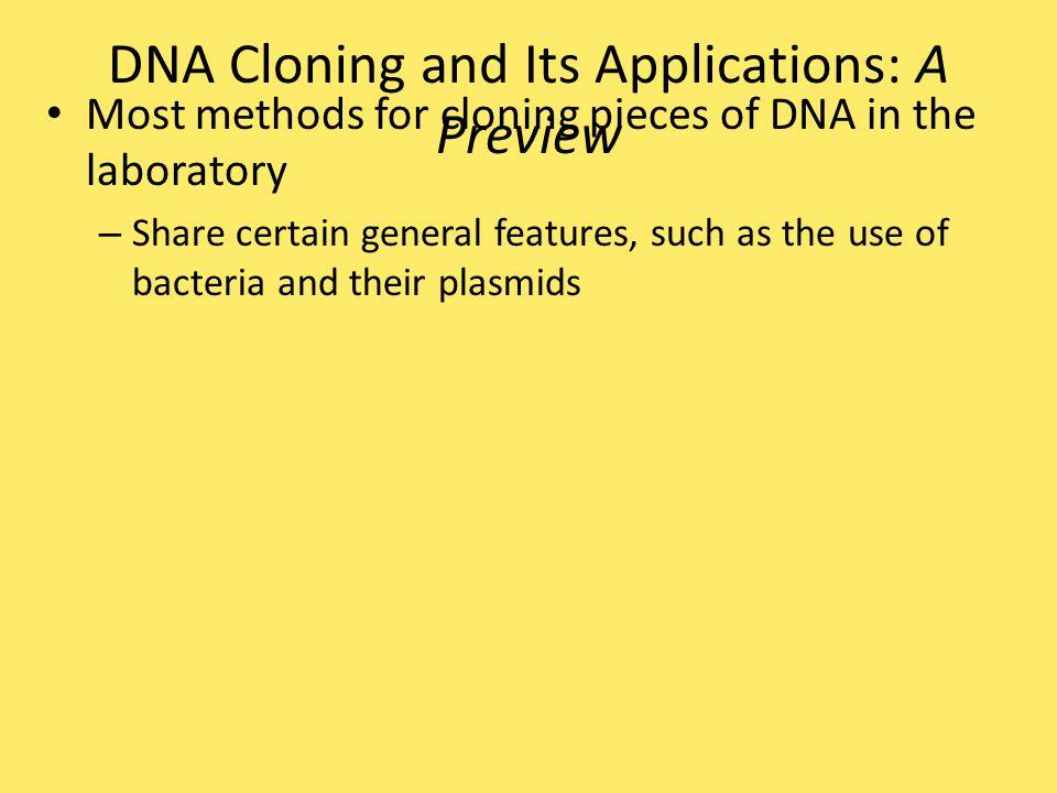 A DNA fingerprint – Is a specific pattern of bands of RFLP markers on a gel Defendant's blood (D) Blood from defendant's clothes Victim's blood (V) D Jeans shirt V 4  g 8  g Figure 20.17
