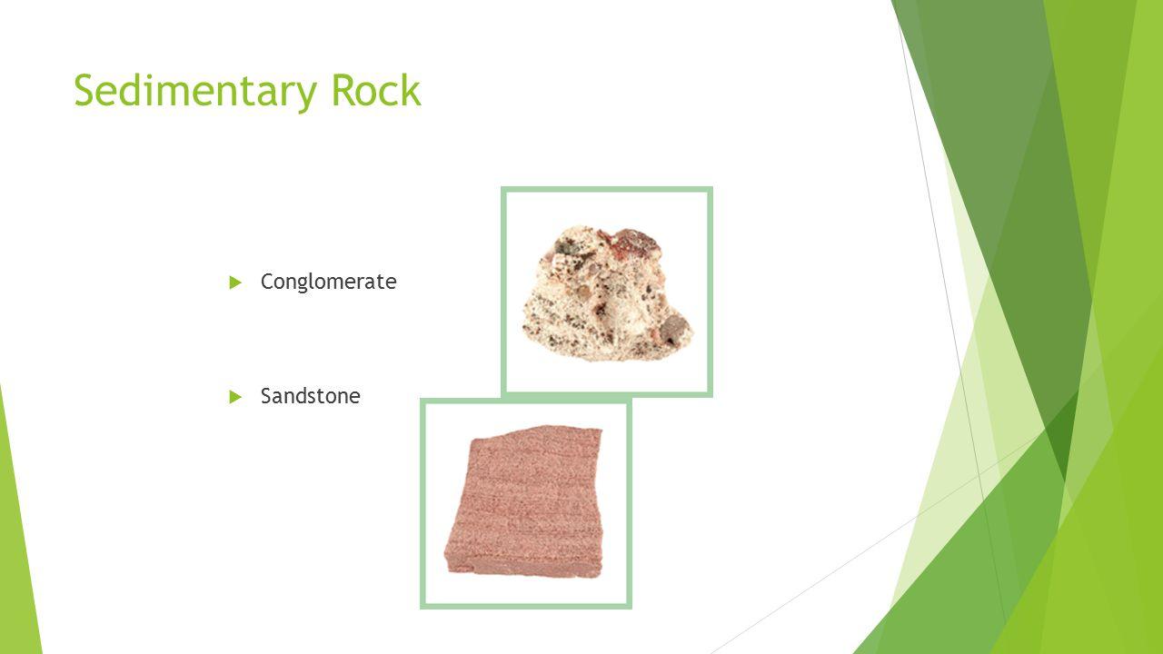 Sedimentary Rock  Conglomerate  Sandstone